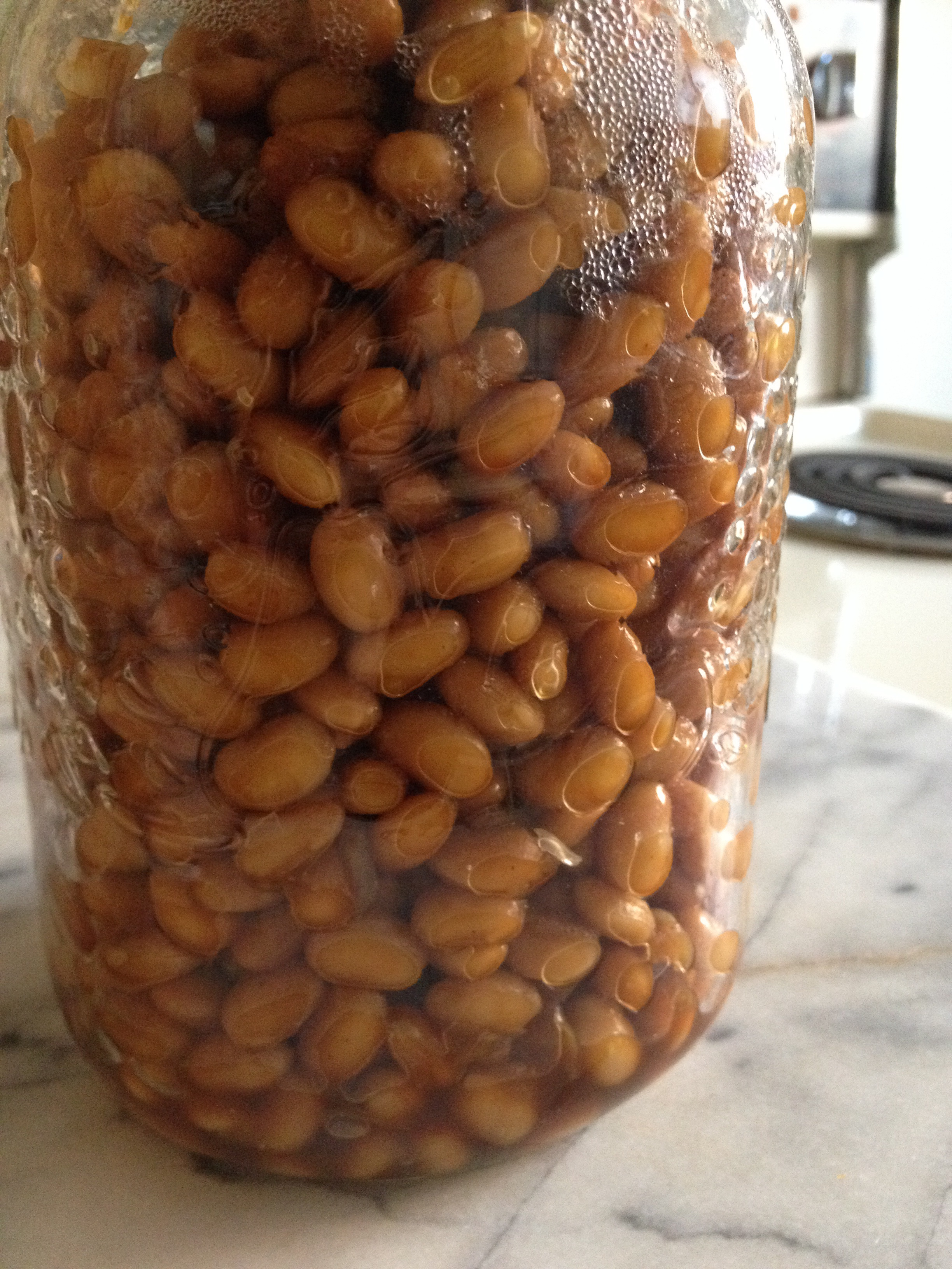 Jarred beans ready to go